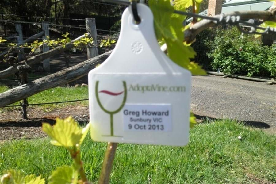 Personalised hang tag on a vine