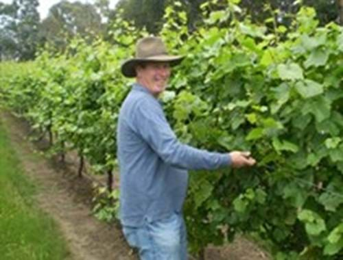 Gisborne Peak Winery Hands-On Days