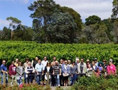 Canopy Management & Crop Estimation Day Gisborne Peak Winery